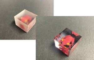 Mipox TuneD3 - 3D Polish Film - Example Frog